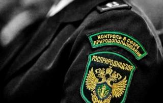 новости компании чистый город - герб росприроднадзор